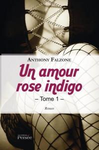 TEM - BOOK - Un amour rose indigo tome 1 1