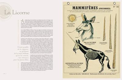 TEM - BOOK - Créatures fantastiques Deyrolle 3