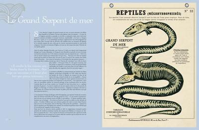 TEM - BOOK - Créatures fantastiques Deyrolle 4